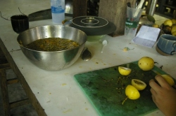 Making Wine, passion fruit wine